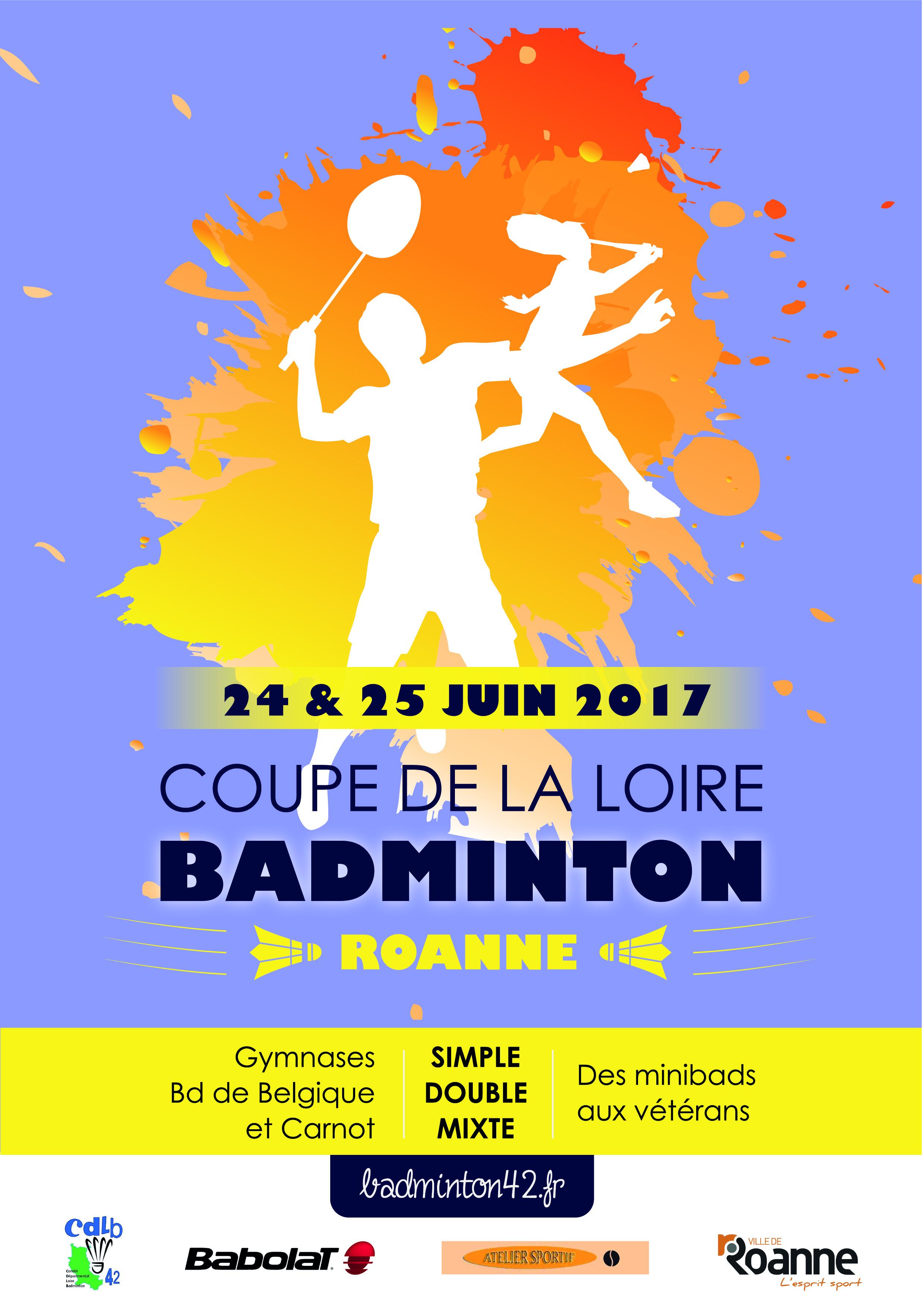 Coupe de la Loire 2016/2017